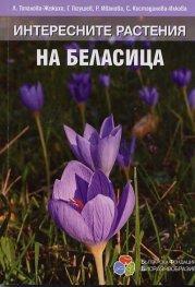 Интересните растения на Беласица