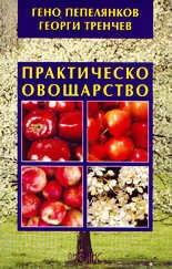 Практическо овощарство
